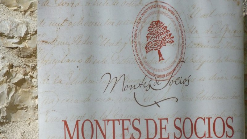 Risultati immagini per Montes de Socios